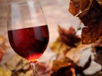 5 sugerencias vinícolas para el otoño