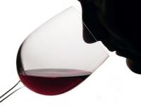 El análisis olfativo: ¿a qué huelen los vinos?