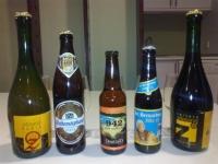 Descubriendo el mundo de la cerveza