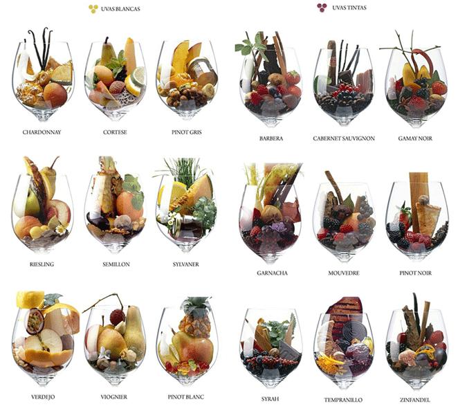 Sabores y aromas en el vino: cuestión de gustos