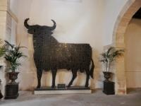 Viaje a tierras gaditanas: vinos de Jerez y Manzanilla, naturaleza y flamenco