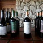 Río de vino -11