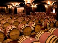 Las edades del vino: ¿la crianza es garantía de calidad?