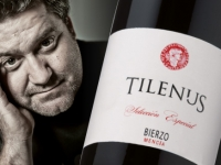 3 elementos esenciales que confirman a Tilenus Selección Especial Crianza 2011 como un gran vino