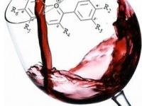 ¿Cuáles son los compuestos del vino y cómo afectan a su color, aroma y sabor?
