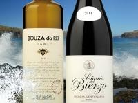 ¿Qué significan los conceptos vino atlántico y vino mediterráneo?