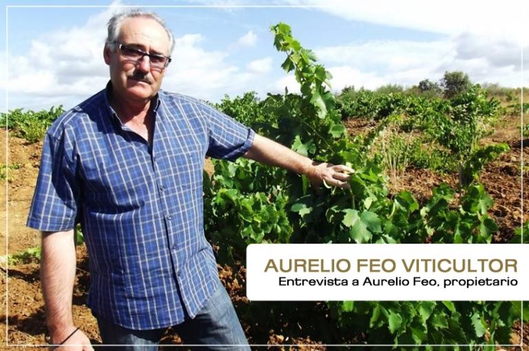 """Aurelio Feo: """"La D.O. Bierzo tiene un halo de romanticismo difícil de encontrar hoy día"""""""