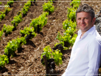 Álvaro Palacios: la estrella del vino español