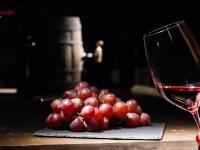 ¿Te pierdes con el léxico vinícola? Terminología básica