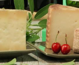 ¿Cuáles son los quesos característicos de las distintas regiones de España?