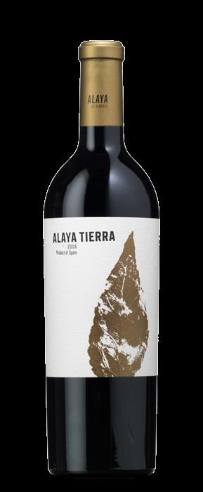 Ayala Tierra 2016