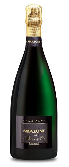 Champagne Amazone de Palmer & Co. Brut