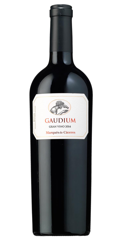 Gaudium 2014