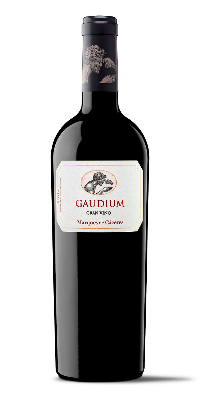 Gaudium 2015