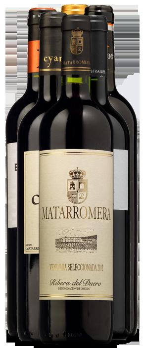Colección Grupo Matarromera