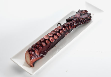 Pulpo Gallego