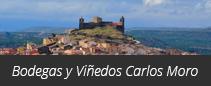 Bodegas y Viñedos Carlos Moro