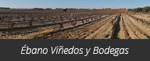 Ébano Viñedos y Bodegas