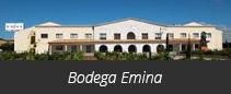 Bodega Emina Ribera