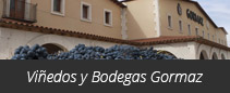 Viñedos y Bodegas Gormaz
