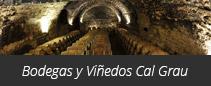 Bodegas y Viñedos Cal Grau