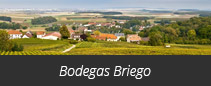Bodegas Briego