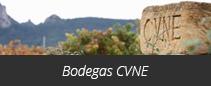 Bodegas CVNE
