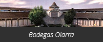 Bodegas Olarra