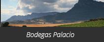 Bodegas Palacio