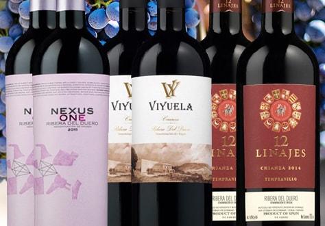 Colección de vinos Ribera del Duero