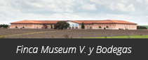 Finca Museum Viñedos y Bodegas