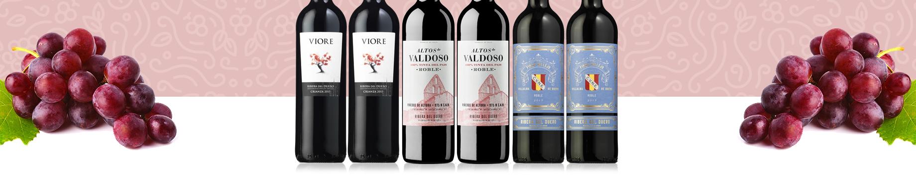 Colección Vinos Ribera