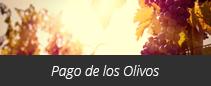 Pago de los Olivos