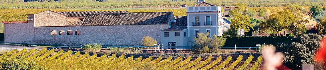 Bodega Mustiguillo, primer Vino de Pago en Levante