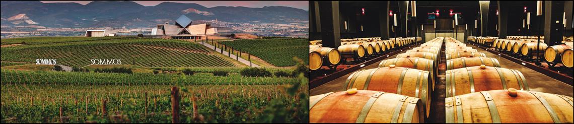 Bodegas, vinos y gastronomía aragonesa en un exclusivo viaje al corazón del Somontano