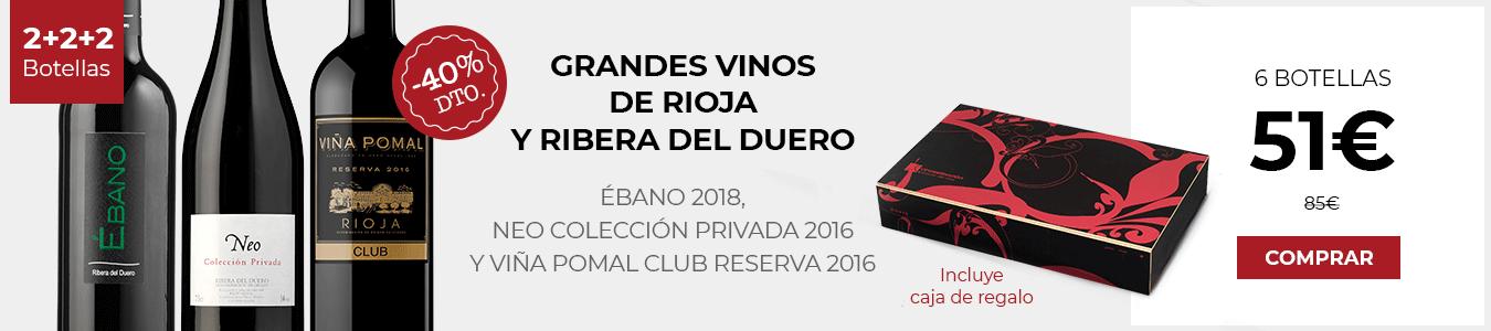 Grandes Vinos Ribera y Rioja