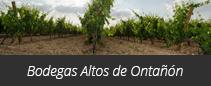 Bodegas Altos de Ontañón