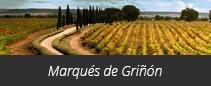 Bodega Marqués de Griñón