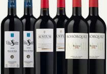 Colección Vinos Ribera del Duero