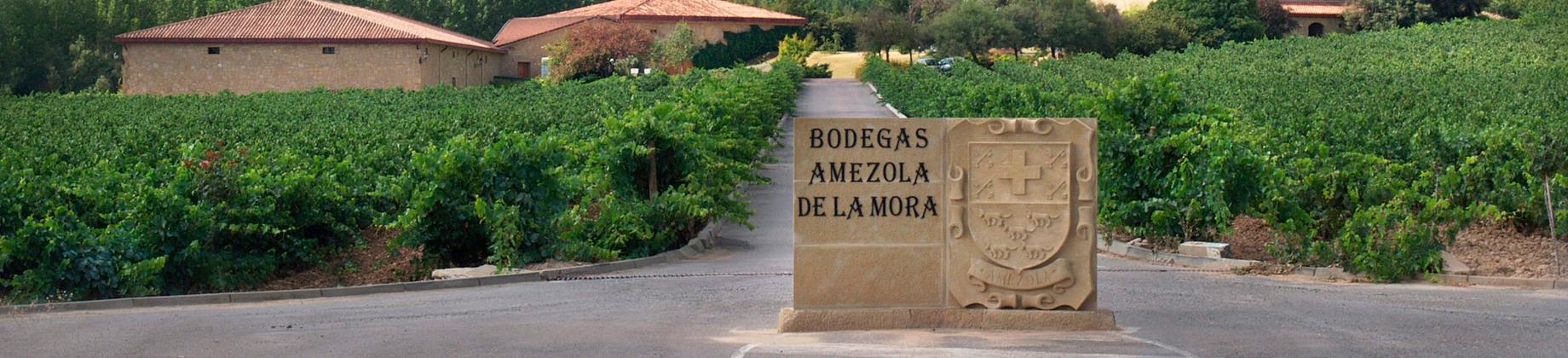 Bodegas Amézola de la Mora