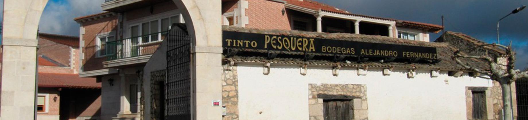 Bodegas Alejandro Fernández Tinto Pesquera