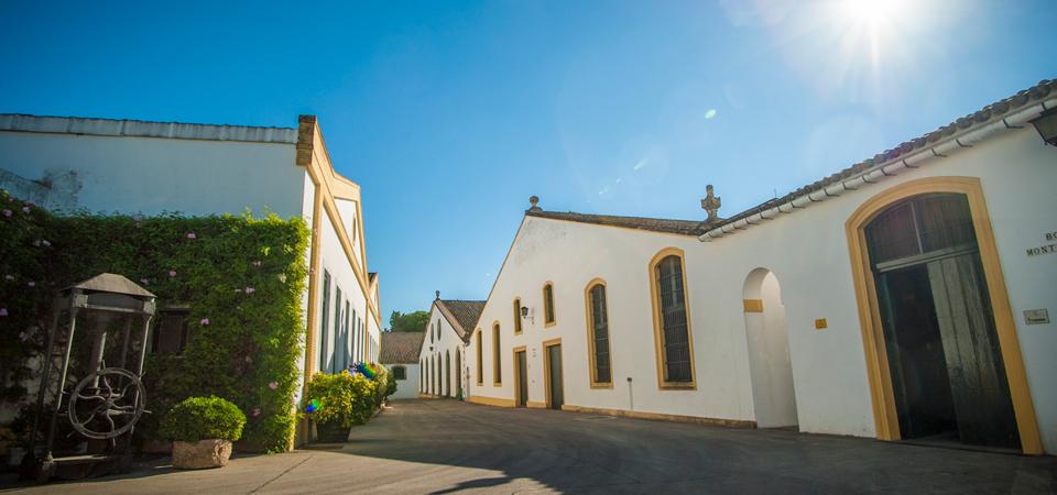 Visita Bodegas Lustau