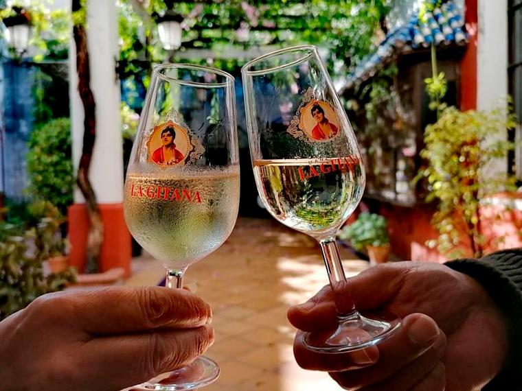 Visita Bodegas Hidalgo La Gitana