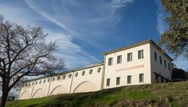 Quinta Sardonia