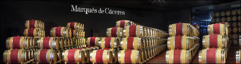 Visita Marqués de Cáceres